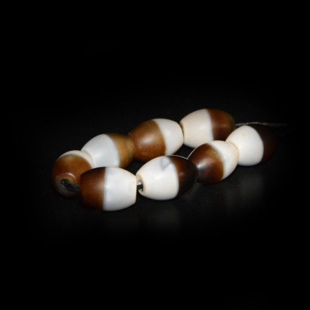 Eight white-brown Dzi Beads from India