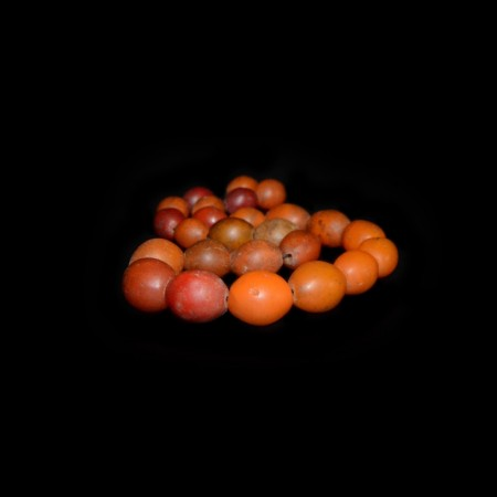 Antique Ethiopian Tomato Glass Beads