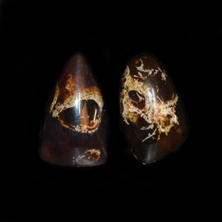 Pair of indonesian Amber Cabochons
