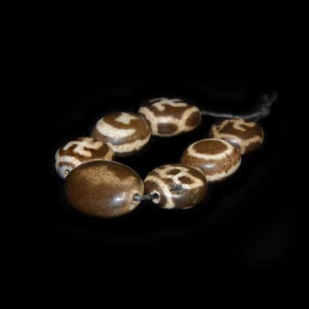 Sieben antike dzi Perlen
