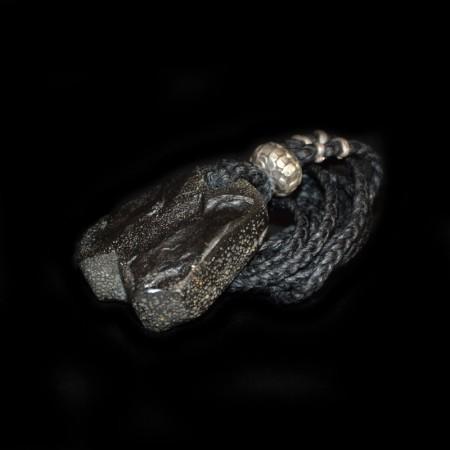 Riesen Gürteltier Schuppen Fossil Talisman