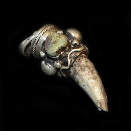 Dinosaurier Zahn Silberanhänger